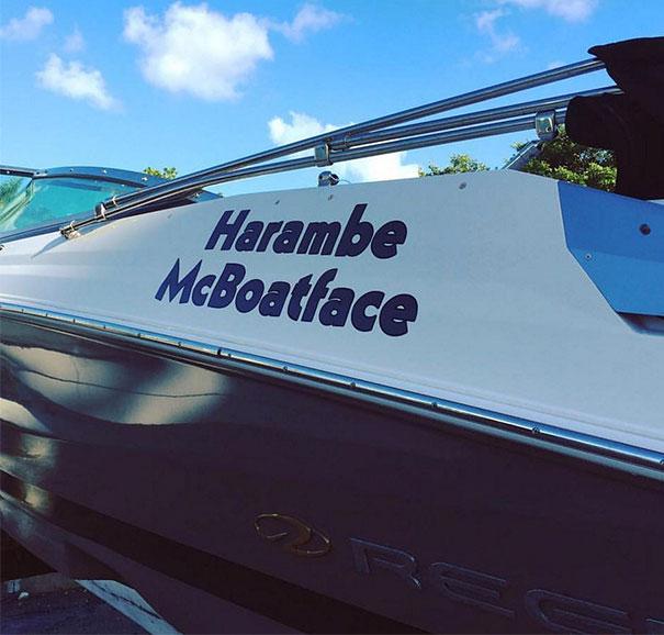 harambe mcboatface